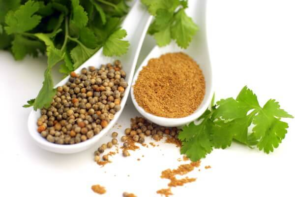 Coriander whole seeds bulgarian spices for Soil meaning in urdu